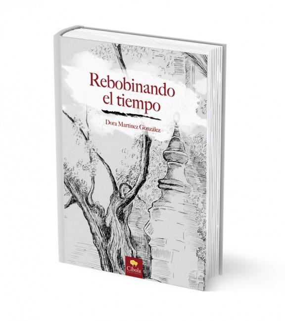 Disenador De Libros En Santander