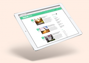 diseño web en cantabria para empresas