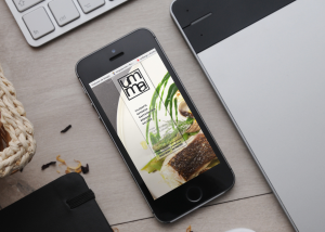 Diseño de paginas web adaptadas para moviles en santander