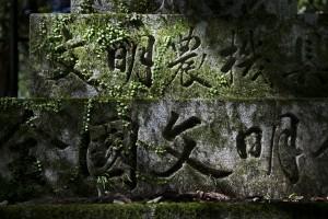 Tokioto_foto-10