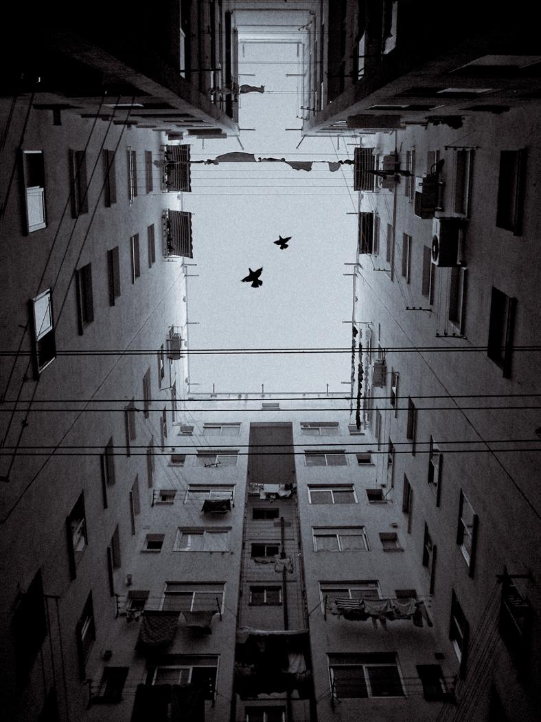 ©Eduardo_Rivas_Obra_premiada_PHE_4